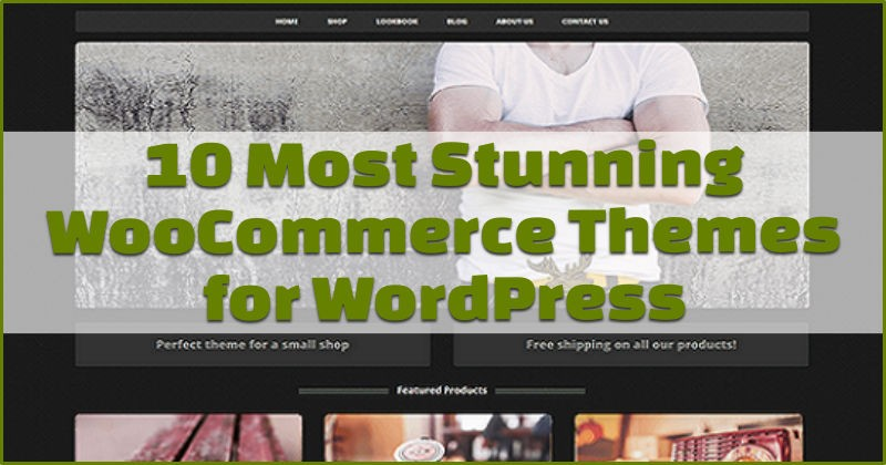 10 most stunning woocommerce themes
