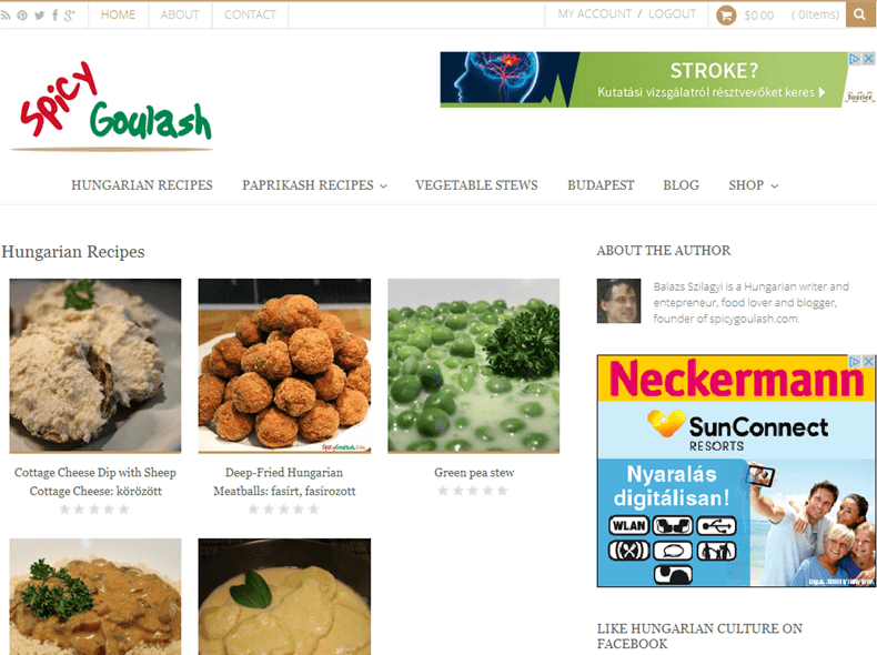 Food and Cook Theme SpicyGoulash Screenshot