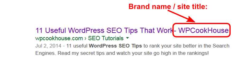 Site title (brand name) SERP example
