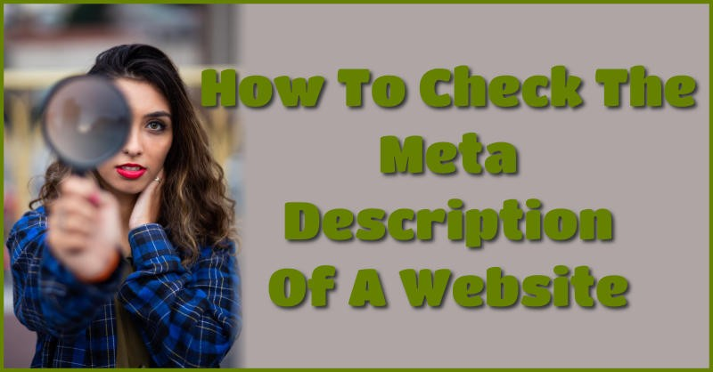 How to check the meta description of a website